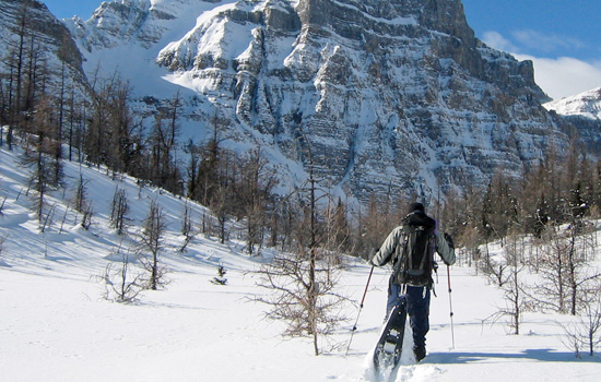 Snow Shoeing Canadian Rockies