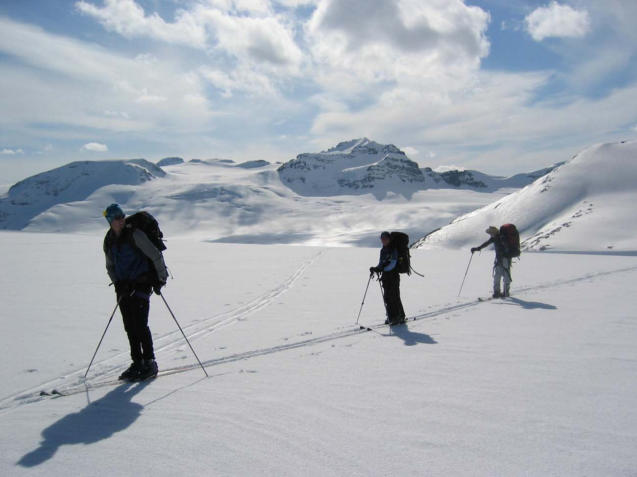 Wapta skiers